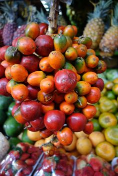 This cluster of fruits is called chontaduro, the fruit of a palm tree that is native to the region. Cali is said to be the chontaduro capital of the world. A very nutritious fruit, it is considered to be an aphrodiasiac. Day Two in Medellín – The Morning - The Martha Stewart Blog