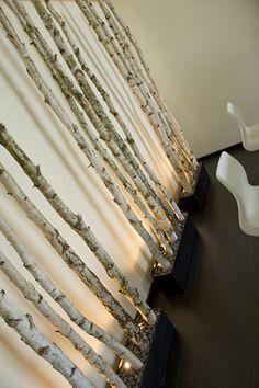 Berkenstammen met verlichting. Berkenstammen verkrijgbaar op www.decoratietakken.nl