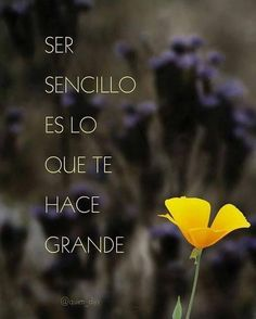 To be simple is what makes you great Favorite Quotes, Best Quotes, Life Quotes, Cute Spanish Quotes, Spiritual Messages, Empowering Quotes, Daily Inspiration Quotes, Love Messages, Romantic Quotes
