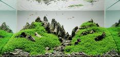 Peter Kirwan Mountainscape - Naturaquarium – Wikipedia