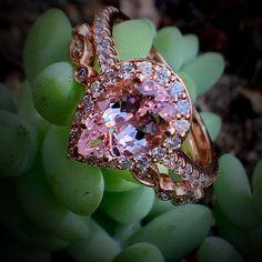 Are you a Lover of Morganite? Gemstone Rings @cobymadisonjewelry 15710 Whittwood Lane #whittier #Ca #shoplocal #shopsmall #shopwhittier #lamirada #lahabra #uptownwhittier #promisering #oc #orangecounty #haciendaheights #engagementring #fullerton #finejewelry #emeraldring #friendlyhills #engagementring #theknotrings #theknot #whittierjewelers #whittierchamber #emerald #emerald-ring #gemstone #theknotrings #morganite #morganitering