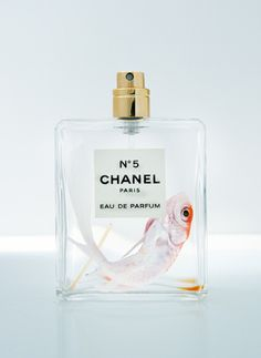 Find images and videos about chanel, fish and perfume on We Heart It - the app to get lost in what you love. Chanel No 5, Coco Chanel, Chanel Chanel, Parfum Chanel, Arte Pop, White Aesthetic, Still Life Photography, White Photography, Perfume Bottles