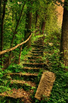 Treppe - stairs