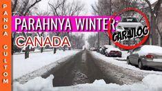 Separah apa sih musim winter di Canada??? Vacation Trips, Canada, Winter, Travel, Outdoor, Winter Time, Outdoors, Viajes, Destinations