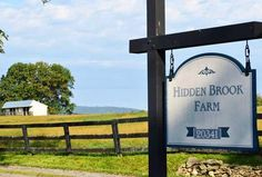 Hidden Brook Farm is located just minutes north of the town of Middleburg, Virginia on a quiet gravel road in Piedmont Hunt Territory.