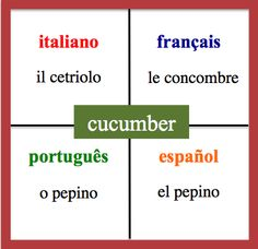 Cucumber - Daily Vocabulary Word in French, Spanish, Italian and Portuguese.