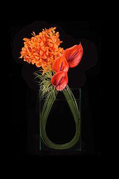 Mokara Mi Amor: Ovando's mokara orchid arrangement showcases modern design with fashionably feminine undertones. Approx. 10″l x 4.5″w x 28″h *colors may vary seasonally *As seen in In Style magazine.