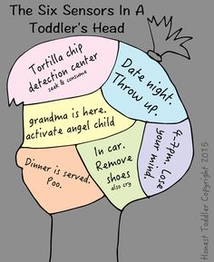 honest toddler: The 6 Sensors in a Toddler's Head SO FUNNY!!