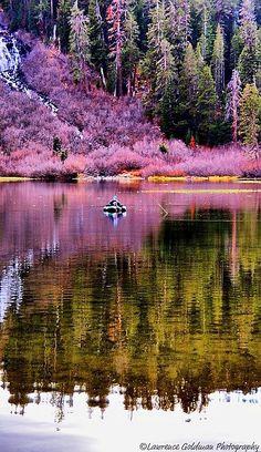 Bass Fisherman, Mammoth Lakes, California #reflections