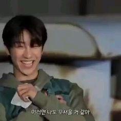 Seventeen Going Seventeen, Seventeen Memes, Seventeen Album, Woozi, Mingyu, Do I Like Him, Seventeen Minghao, Just Video, Asian Babies