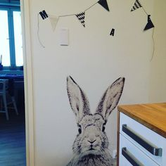 We have this cute bunnyguy in our kitchen #magnetwallpaper #rabbit #groovymagnets #decoration #kitchen #home