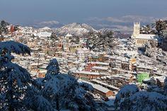Snowing in Shimla