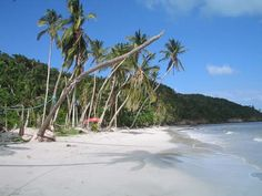Beaches & Zones of Providencia Island, Colombia Colombia Tourism, Areas Protegidas, South America, Adventure, Beach, Water, Destinations, Travel, Outdoor