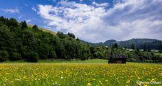 Bucovina, Romania (photo by Marius Ciocan)