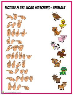 Match up pictures with words spelled out with Sign Language ABC handshapes. 4 worksheets are colors, numbers, animals & shapes. Great for younger learners with elementary or basic vocabulary but works great for anyone needing fingerspelling practice. Sign Language Games, Sign Language Chart, Sign Language For Kids, Sign Language Phrases, Sign Language Alphabet, Sign Language Interpreter, British Sign Language, Learn Sign Language, Language Activities