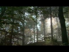 Lead, Kindly Light (one of my favorite hymns) beautifully sung by the Mormon Tabernacle Choir