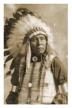 """Chief Seattle :   """"Humankind has not woven the web of life. We are but one thread within it. Whatever we do to the web, we do to ourselves. All things are bound together. All things connect."""""""