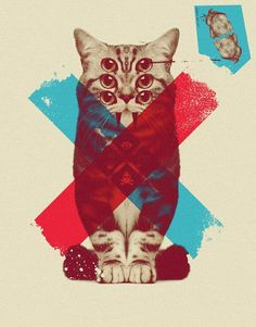 WEIRD III by Alex Lorenzo, via Behance