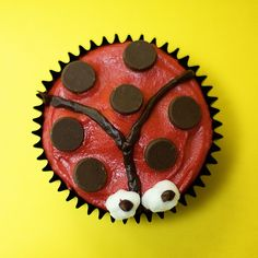 ANIMAL CUPCAKES: BEE, LADY BUG, & BUTTERFLY