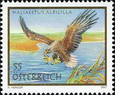 Stamp: White-tailed Eagle (Haliaeetus albicilla) (Austria) Mi:AT 2683,Yt:AT 2510,Sg:AT 2886,ANK:AT 2710,WAD:AT047.07