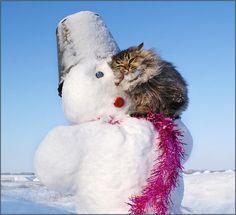 I love you, snowman. *