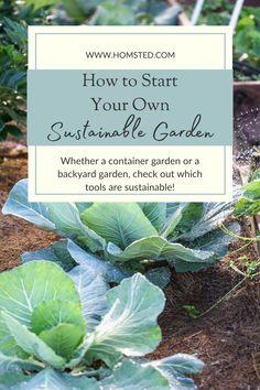 Sustainable Gardening, Gardening Tools, Gardening Supplies, Container Gardening, Vegetable Gardening, What To Plant When, Urban Garden Design, Victory Garden, Natural Living