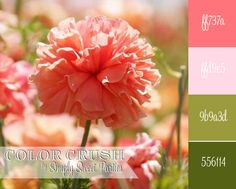 {Color Crush} Pink and Green   Simply Sweet Printable Party Designs