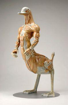 Juxtapoz Magazine - Alien Anatomy Sculptures by Masao Kinoshita Mythological Creatures, Fantasy Creatures, Mythical Creatures, Gunther Von Hagens, Anatomy Sculpture, Hi Fructose, Japanese Artists, Creature Design, Sculpting