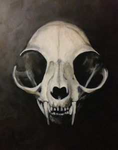 Alexis Tyrala - Weblog - Another Cat skull