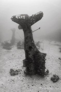 Imgur: The magic of the Internet Abandoned Ships, Abandoned Cars, Abandoned Buildings, Abandoned Places, Photos Sous-marines, Pictures, Underwater Ruins, Underwater Shipwreck, Photo Avion
