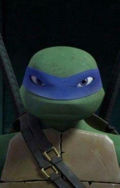 Ninja Turtles Art, I Ninja, Teenage Mutant Ninja Turtles, Tortugas Ninja Leonardo, Turtle Facts, Tmnt Leo, Metal Gear Rising, Leonardo Tmnt, Tmnt 2012