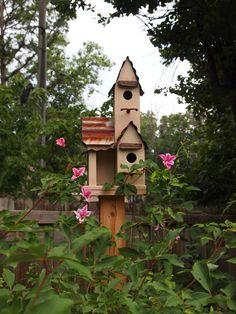 Sue's gardens in Arkansas--Click through to see more!