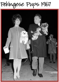 I admire the fact Liz knew fashion and loved dogs. A remarkable woman!