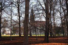 Im Park mit Kirche- Parkkirche