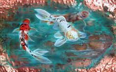 Copper Painting - Copper Koi by Sandi Baker