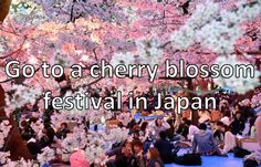 Go to a cherry blossom festival in Japan.