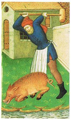 Pig slaughter.