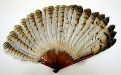 American Gilded Age era, feather fan (composed of plastic and feathers), c.1890.  ~ {cwl} ~~ (Part of the Metropolitan Museum of Art Collection - NYC).