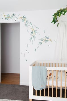 Alexander's Australian inspired nursery. Eucalyptus removable wall decals, vinyl wall decal of gum nuts and eucalyptus leaves