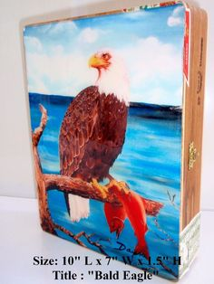 """""""Bald Eagle"""" Exclusive  Cigar Box with Artwork on top. Limited Edition 2015"""