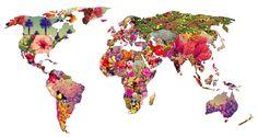 Las 10 Razones para Vivir en el Extranjero