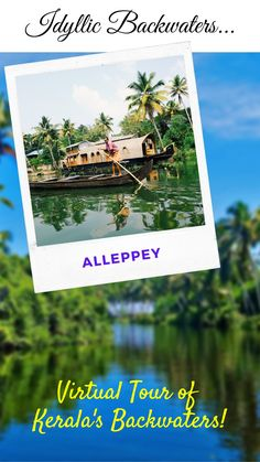 Check out this complete guide to Kerala Backwaters. This will help you plan your trip to the beautiful backwaters of Kerala (India), and make the most out of your time! #kerala #backwaters #travel #india #photography Kerala Backwaters, Kerala Travel, States Of India, Kerala India, Travelogue, Plan Your Trip, Virtual Tour, The Locals, Tours