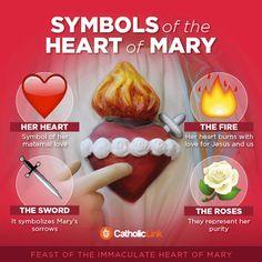 Catholic Infographic: Symbols of the Immaculate Heart of Mary Catholic Beliefs, Catholic Prayers, Catholic Art, Christianity, Catholic Traditions, Catholic Children, Catholic Answers, Catholic Quotes, Roman Catholic