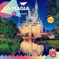 El grupo #purpuraF16 está en el aire en busca de su viaje inolvidable!  Ahí vamos #Disney!   Vuelo AR 1302  Seguilo en: http://clyck.com.ar/ARG1302
