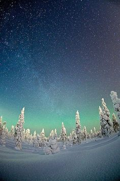 Northern lights - Under the starry sky of Rovaniemi, Finland Why can't it be that pretty and calm here! #winter #wisconsin #weather
