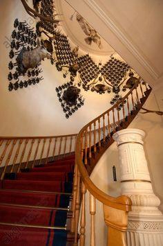 Treppenaufgang in der Kaiservilla Die Habsburger, Villa, Akg, Sissi, Kaiser, Stairs, History, Home Decor, Homes