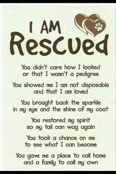 I am rescued!