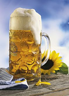 """English language, German beer styles explained!  Famous saying .. """"In heaven there is no beer, that's why we drink it here!""""  The story goes that the monks in Germany invented rich yeasty beer to drink during fasting times."""