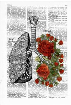 Lungs with red roses human Anatomy Print - Anatomy art gift, love art, human anatomy art, lungs and roses art Anatomie + Art Mural Amour, Art Amour, Don Du Sang, Human Anatomy Art, Anatomy Drawing, Art Du Collage, Vintage Illustration, Medical Illustration, Art Vintage