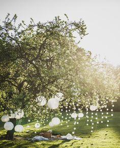 Ideen SOLVINDEN Decoration for fairy lights Ball white on fairy lights hanging in a tree. String Lights Outdoor, Hanging Lights, Fairy Lights, Picnic Party Decorations, Garden Wedding Decorations, Garden Picnic, Backyard Picnic, Most Beautiful Gardens, Amazing Gardens